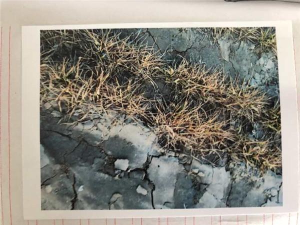270吨危险废液非法跨省倾倒黄河支流 河南濮阳市长出庭索赔550多万元